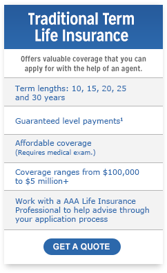 Online Quotes For Life Insurance Stunning Term Life Insurance Quotes & Rates  Term Insurance  Aaa